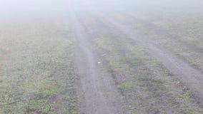 Nebel an der Landschaft stock video