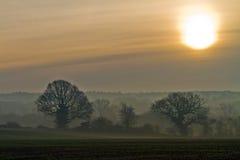 Nebel des frühen Morgens über den Feldern stockbilder