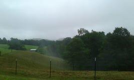 Nebel des frühen Morgens Stockfotografie