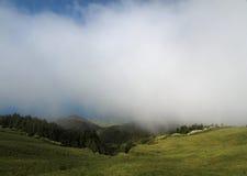 Nebel des frühen Morgens lizenzfreie stockfotos