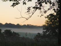 Nebel des frühen Morgens Lizenzfreie Stockfotografie