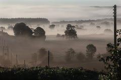 Nebel des frühen Morgens - Vereinigtes Königreich Stockfoto