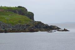 Nebel entlang der Neufundland-Küstenlinie lizenzfreie stockbilder