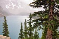 Nebel geht unten an der See-Moraine Stockbild