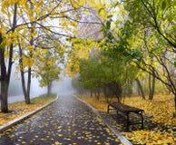 Nebel im Herbstpark Stockbild
