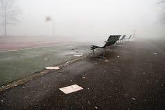 Nebel im Park Stockfotografie
