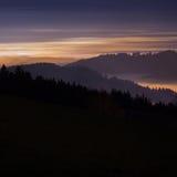 Nebel im Schwarzwald nachts Stockfotos