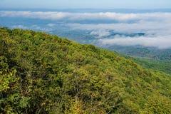 Nebel im Tal Lizenzfreie Stockfotografie