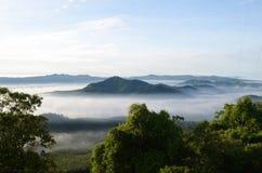 Nebel am Khohong Hügel Stockbilder