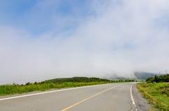Nebel in Neufundland stockfotografie