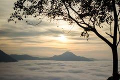 Nebel Phu Tok bei Chiang Khan Stockfotografie