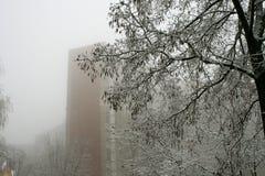 Nebel, Schnee, Baum Lizenzfreies Stockfoto