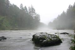 Nebel und Fluss lizenzfreie stockfotografie