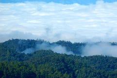 Nebel und hohe Spitzen Stockfotos