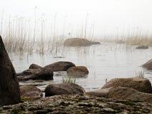 Nebel und Küstenfelsen Lizenzfreie Stockfotos