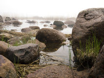 Nebel und Küstenfelsen Lizenzfreie Stockbilder