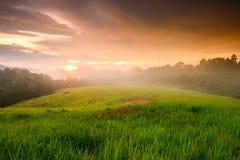 Nebel und Licht Lizenzfreies Stockfoto
