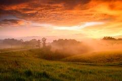 Nebel und Licht Stockfotos