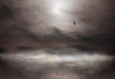 Nebel und Möve Lizenzfreie Stockfotos