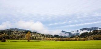 Nebel und Sonne auf Herbstmorgen in Corvallis, Oregon Lizenzfreies Stockbild