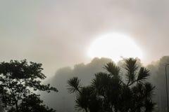 Nebel-und Sonne Morgen nach Berg stockfotos