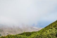 Nebel- und Wolkenbildung entlang dem TF-134 in Teneriffa lizenzfreie stockbilder