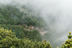 Nebel- und Wolkenbildung entlang dem TF-134 in Teneriffa lizenzfreies stockbild