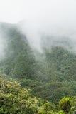 Nebel- und Wolkenbildung entlang dem TF-134 in Teneriffa stockfotografie