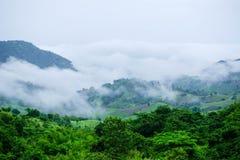 Nebel- und Wolkengebirgstallandschaft Lizenzfreies Stockfoto