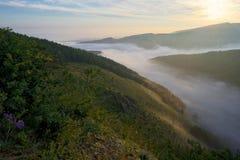 Nebel zwischen den Steigungen lizenzfreies stockbild