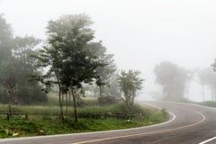 Nebelabdeckung die Straße Lizenzfreie Stockfotografie