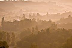 Nebelbäume als Dämmerung lizenzfreie stockbilder