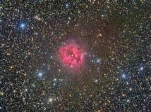 Nebelfleck des Kokon-IC5146 Lizenzfreies Stockbild