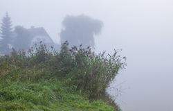 Nebelhaft in der Herbstsaison stockfotografie