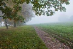 Nebelhaft in der Herbstsaison stockbilder