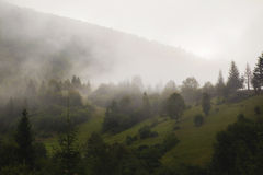 Nebelhafte Berge kalt Stockbild