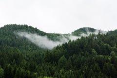 Nebelhafte Bergspitze Lizenzfreie Stockfotos