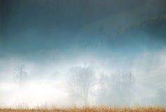 Nebelhafte Landschaft Lizenzfreies Stockbild