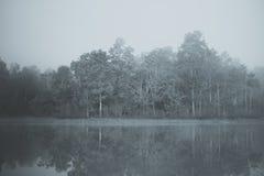 Nebelhafte Landschaft Stockfoto