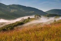 Nebelhafte Landschaft Lizenzfreie Stockfotos