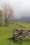 Nebelhafte Landschaft in den Hochländern, Schottland Lizenzfreie Stockbilder