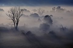 Nebelhafte Landschaft des Morgens im River Valley Stockbilder