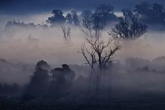 Nebelhafte Landschaft des Morgens im River Valley Stockfotos