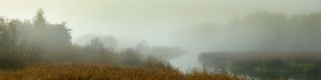 Nebelhafte Landschaft des Morgens Panoramablick von einem schmalen Fluss mit sumpfigen Ufern im dichten Nebel stockfotografie