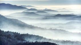 Nebelhafte Landschaft an einem Wintermorgen lizenzfreie stockfotos