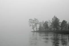 Nebelhafte Landschaft mit Bäumen B&W Stockfotos
