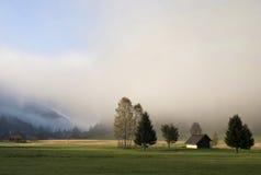 Nebelhafte Landschaft nahe Menzenschwand Stockfotografie