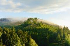 Nebelhafte Landschaft in Sösestausee Lizenzfreie Stockfotografie