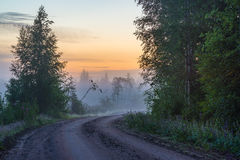 Nebelhafte Landschaftsstraße Lizenzfreie Stockfotografie