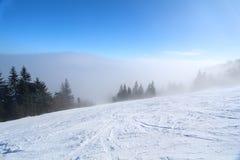 Nebelhafte Schneesteigung mit Bäumen Stockfotografie
